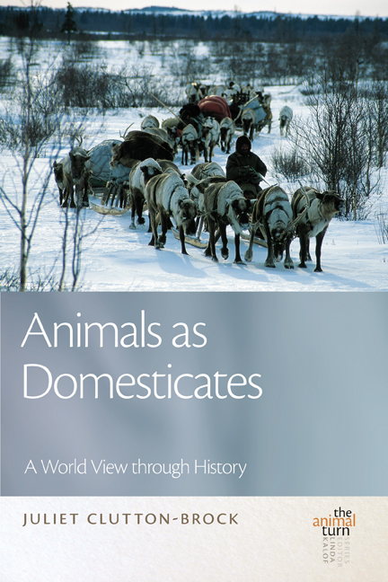Animals as Domesticates cover