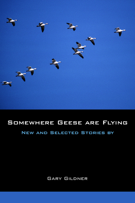 Somewhere Geese are Flying cover