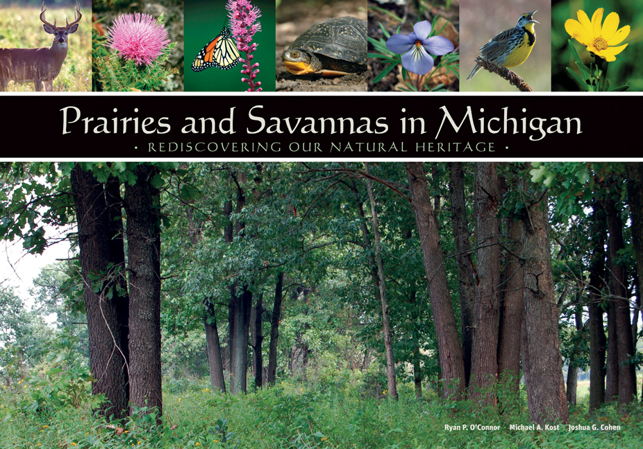 Prairies and Savannas in Michigan cover